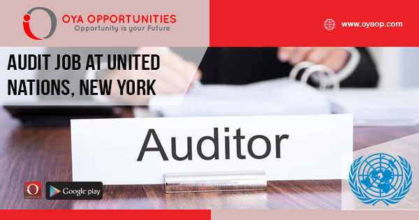 Audit job at United Nations, New York