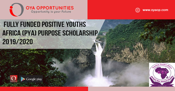 Fully Funded Positive Youths Africa (PYA) Purpose Scholarship 2019/2020