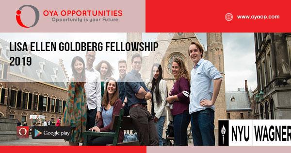Lisa Ellen Goldberg Fellowship 2019