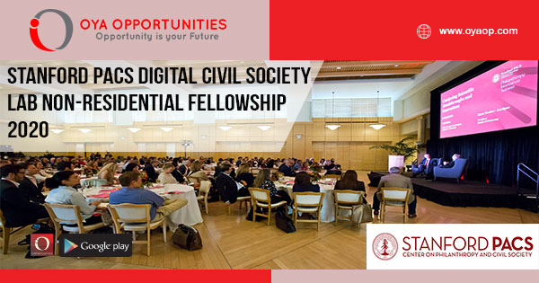 Stanford PACS Digital Civil Society Lab Non-Residential Fellowship 2020
