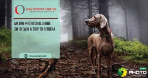 Metro Photo Challenge 2019 (Win a trip to Africa)