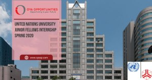United Nations University Junior Fellows Internship Spring 2020