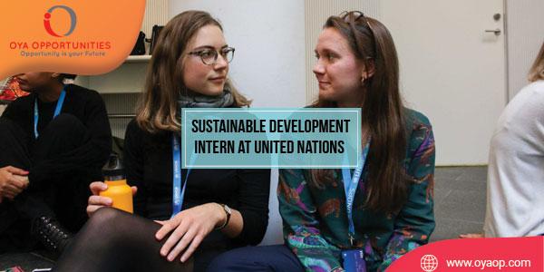 UN Sustainable Development Intern in New York