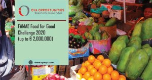 FAMAE Food for Good Challenge 2020 (up to € 2,000,000)