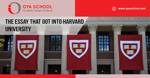 The Essay that Got Into Harvard University