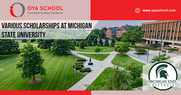 Various Scholarships at Michigan State University