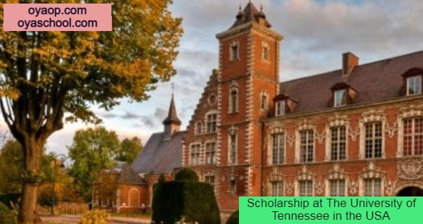 Scholarship at The University of Tennessee in the USA