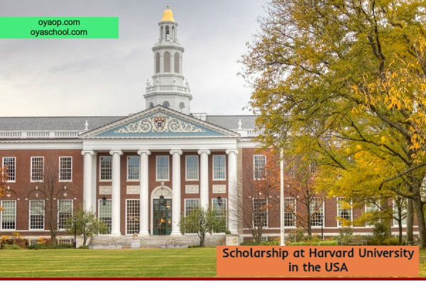Scholarship at Harvard University in the USA