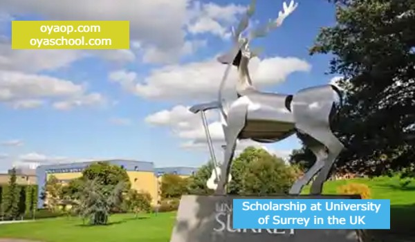 Scholarship at University of Surrey in the UK
