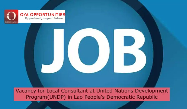 Vacancy for Local Consultant at United Nations Development Program(UNDP) in Lao People's Democratic Republic