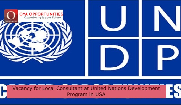 Vacancy for Local Consultant at United Nations Development Program in USA