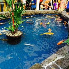 fish pond at ala moana mall hawaii