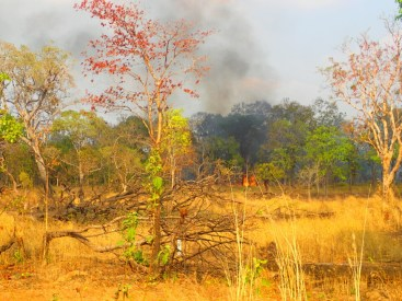 Encore un feu | A fire again