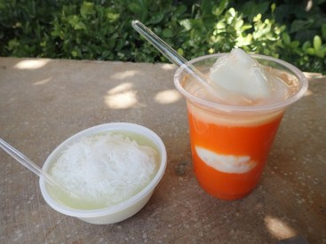 Shiraz : glace et jus de carotte | ice and carrot juice