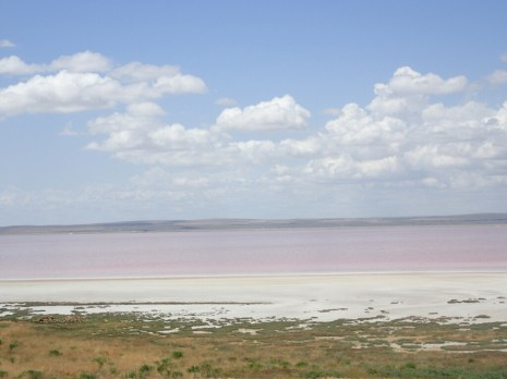 Lac salé | Salted lake