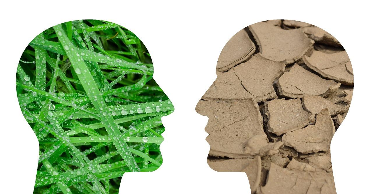 Traditionnel vs Agile : pourquoi changer ?