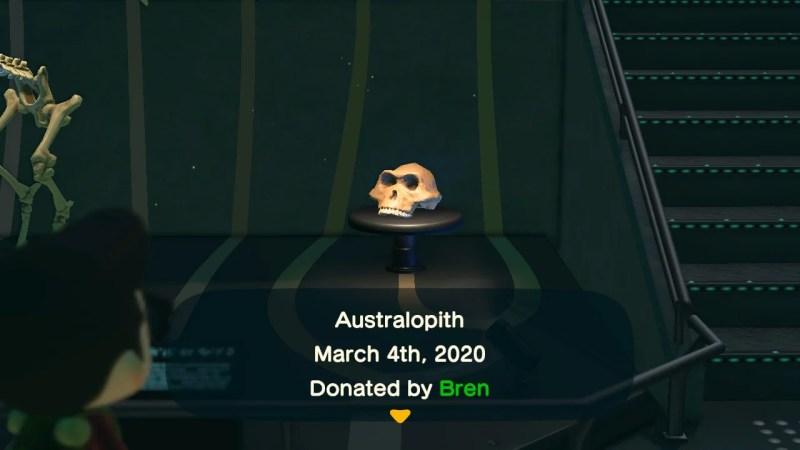 ACNH Australopith.jpg