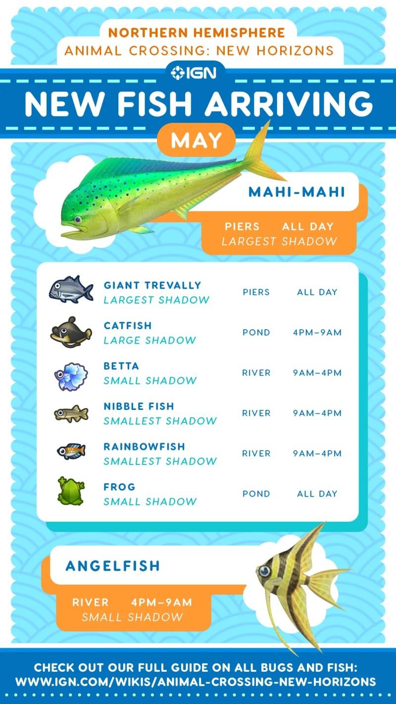 AnimalCrossing-FishforMay.jpg