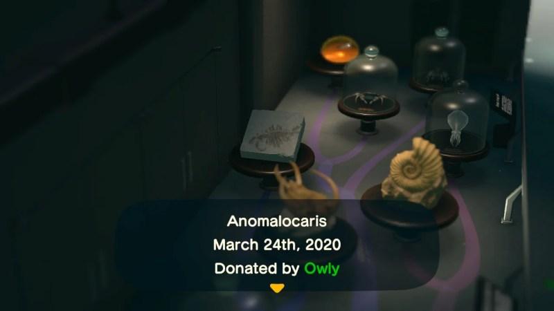 ACNH Anomalocaris.jpg