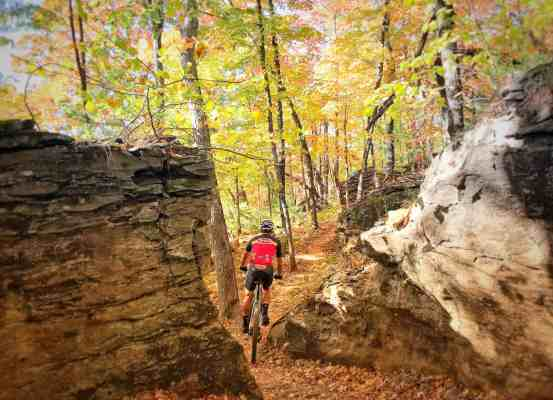 Tuesday Shorts 10/9 | NWA Cycling News - Ozark Cycling Adventures, Cycling news and Routes in Northwest Arkansas NWA