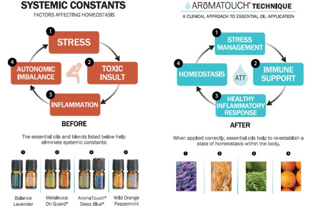 aromatouch-systemic-constants