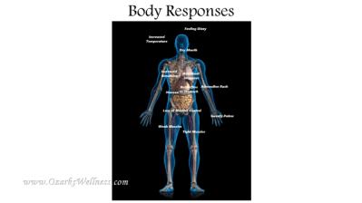 body responses