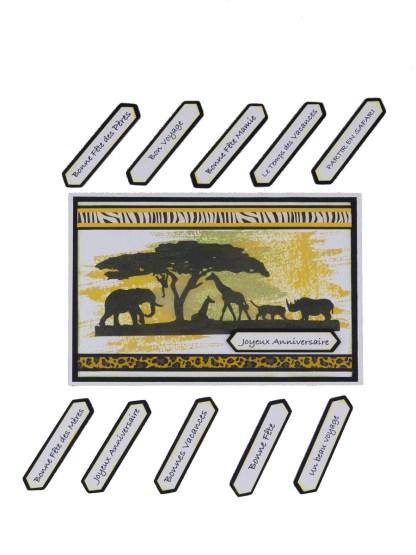 Carte savane Kezo