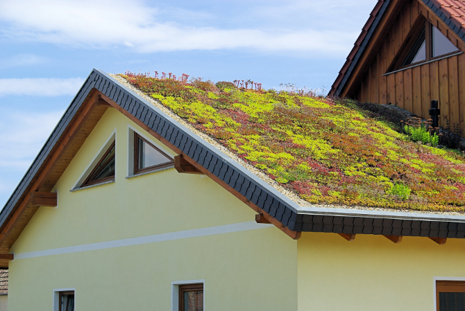 green roofing ideas for your custom built home