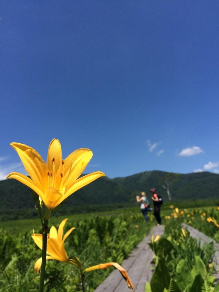 north-tokyo-summer