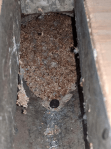 Why should I get a duct cleaning?