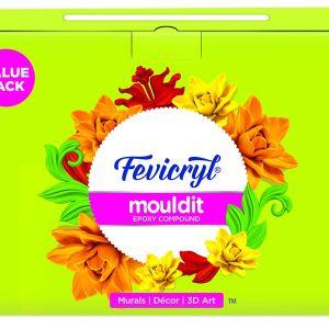 Fevicryl Mould It 800 Gm