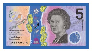 five-dollar-note-ngb