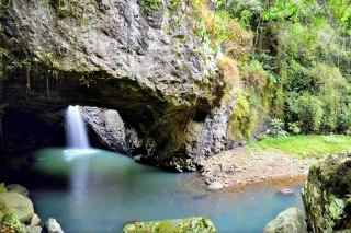springbrook-national-park