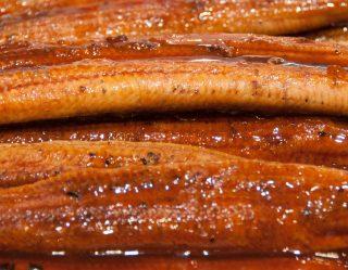 smoked-eel