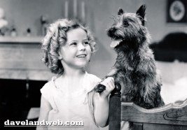 toto-and-shirley