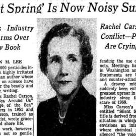 Rachel Carson, Environmental Heroine and DDT, And Year 2020