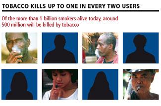 tobacco_epidemic_factfile_05.jpg