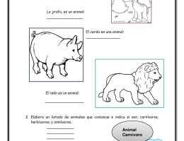 Herbivoros Animales Carnivoros Para Dibujar On Log Wall