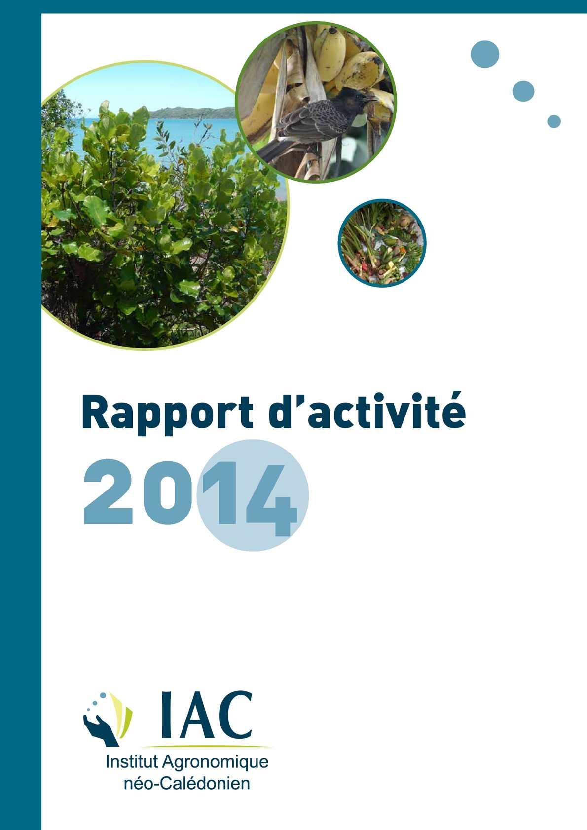 Calameo Rapport D Activite 2014 8 07 2015 Ok Optimise