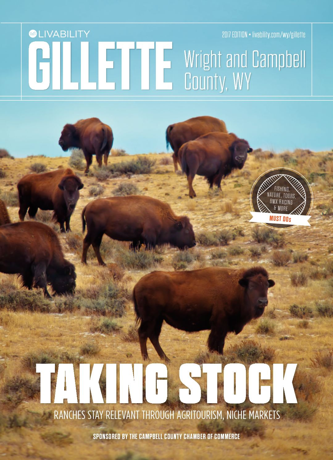 Image Result For American Bison Craft Activity Wyoming Unit Study