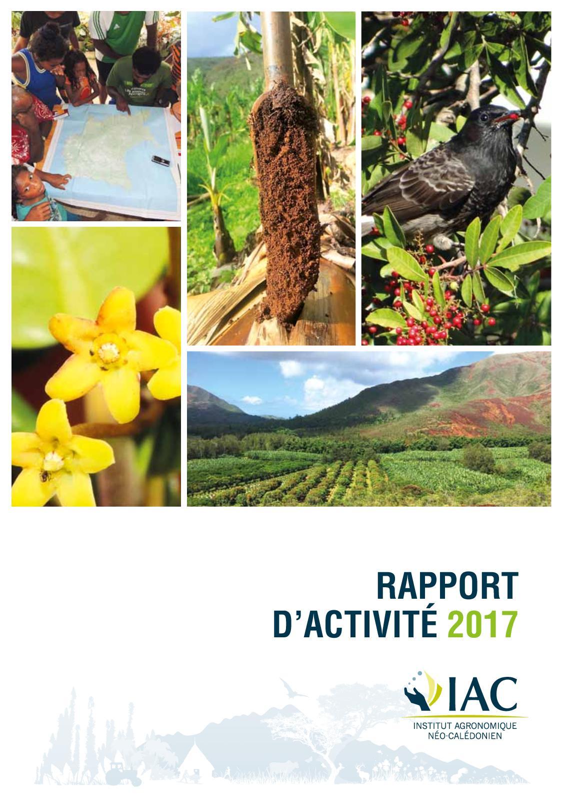 Calameo Rapport D Activites De L Iac 2017