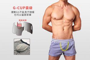 willmax,日版,g-cup,棉,平口褲,男內褲,japanese,cotton,trunks,underwear