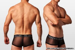 半透明,網紗,好屌型,四角褲,男內褲,translucent,mesh,enhancing bulge,boxers,underwear