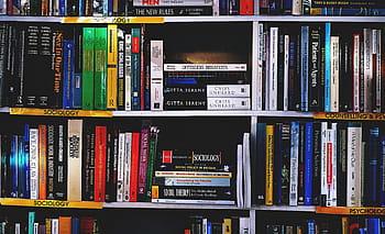 Royalty-free bookshelf photos free download   Pxfuel