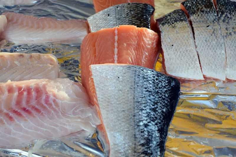 fresh fish, fish fillet, salmon, salmon fillet, seafood, food, fish, freshness, food and drink, vertebrate | Pxfuel