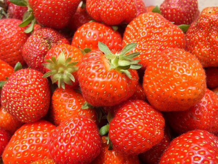 cueillette-fer-de-viltain-roses-oeillets-des-poetes-fraises-oignons-jaunes-groseilles-lys-courgettes-jus-de-pomme-verger (3)