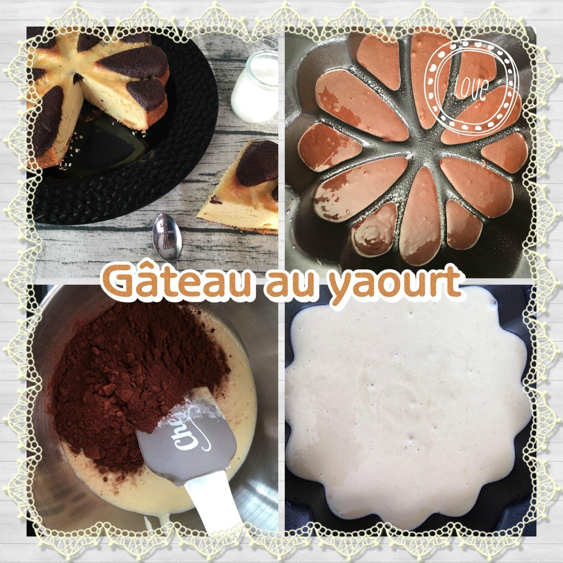 gateau au yaourt et ses variantes les