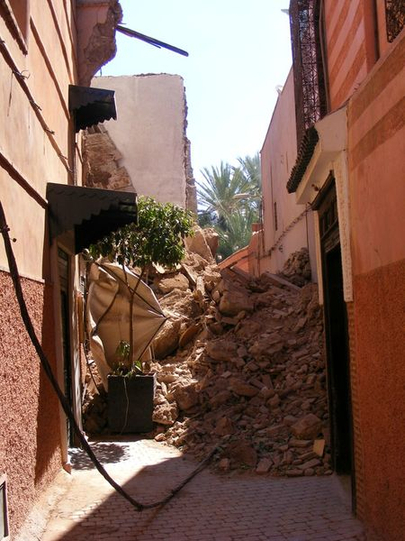 Maroc-marrakech-rues-streets-cat (6)