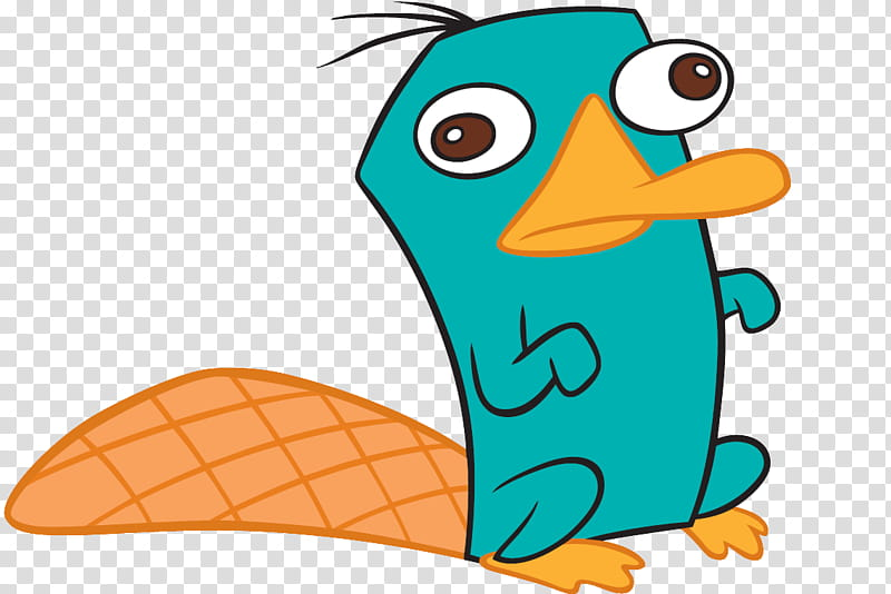 Perry El Ornitorrinco Perry The Platypus Transparent Background