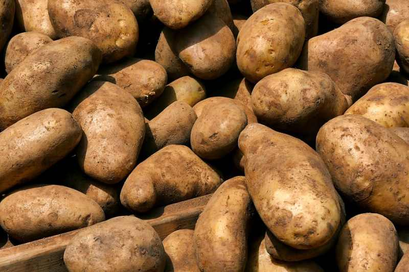 10 Foods That Help You GrowBeards Fast potatoes - just4ur.info